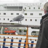 Helsinki, im Hafen