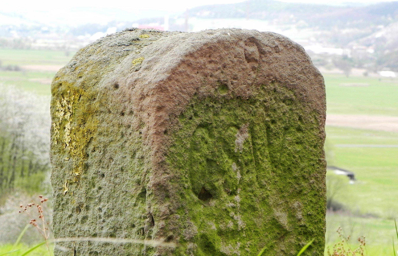 ZeitzeugenZeitzeugen der Teilung, historischer Grenzstein an der ehemaligen Grenze bei Dippach