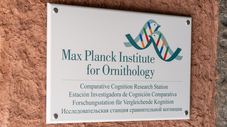 Atlantik, Teneriffa, La Orotava, Loro Parque, Max-Planck-Institut für Ornithologie