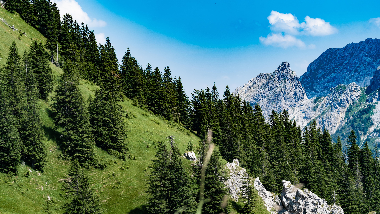 Allgäu, bei Füssen, Blick vom Tegelberg auf Lech und Füssen