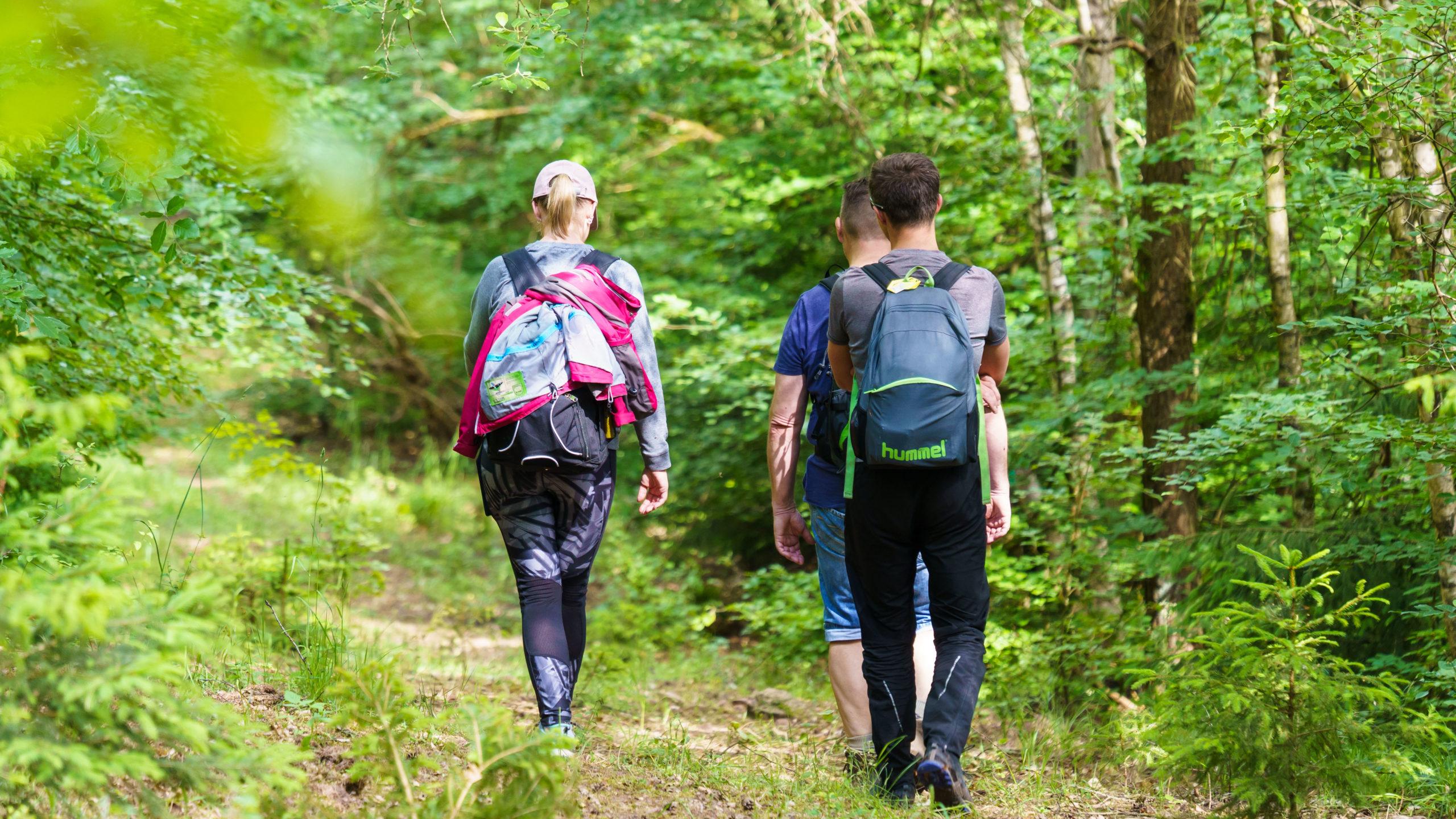 Grenzweg Gerstunger Forst, Weg nahe Kirchwaldskopf