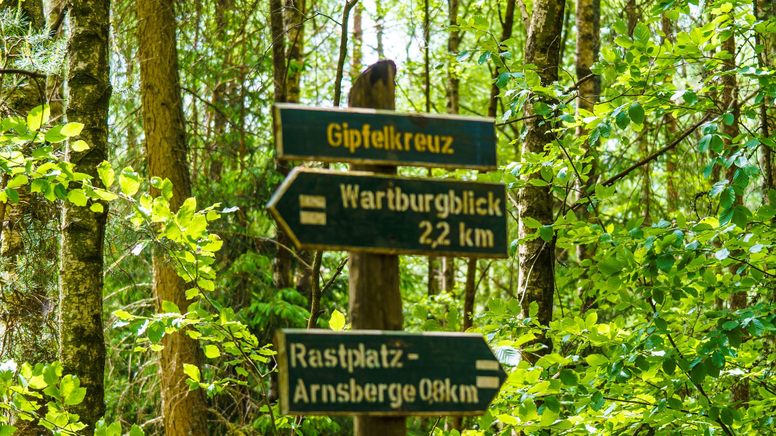 Grenzweg Gerstunger Forst, Gipfelkreuz am gemeinsamen Weg am Arnmsberg
