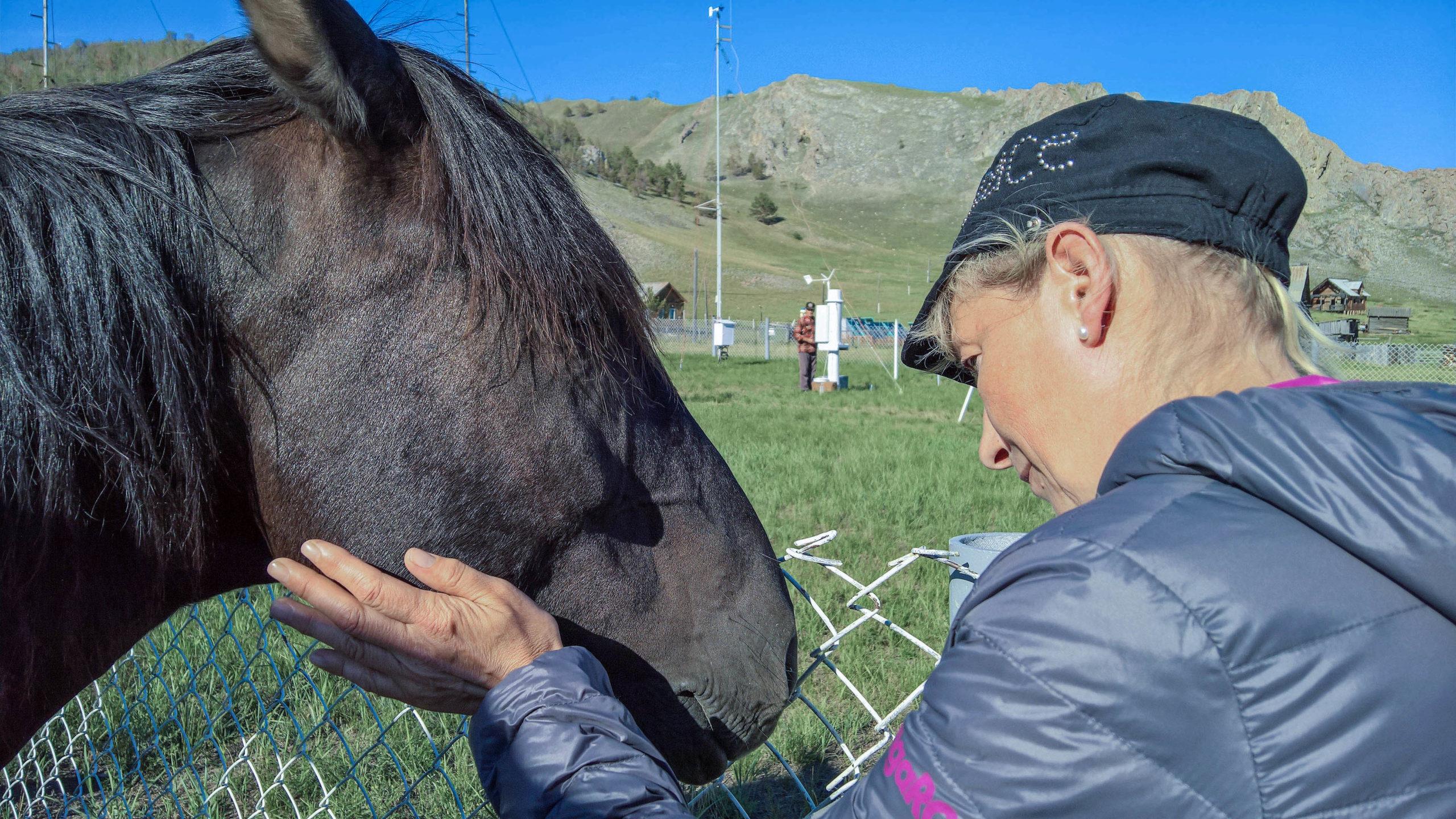 Die Pferdeflüsterin mit einem Wildpferd, an der Wetterstation im Norden von Olchon (Baikal)