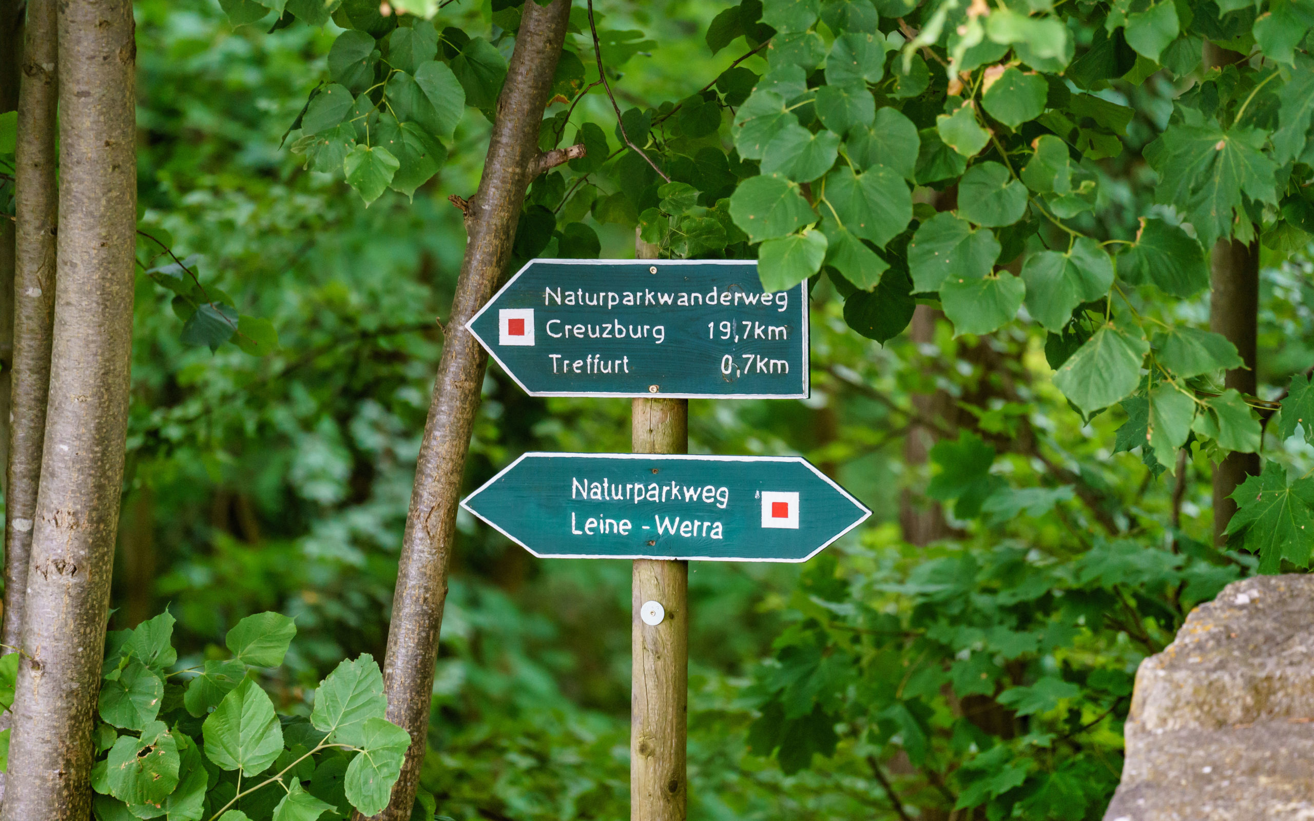 Thüringen, Treffurt, an der Burg Normannstein
