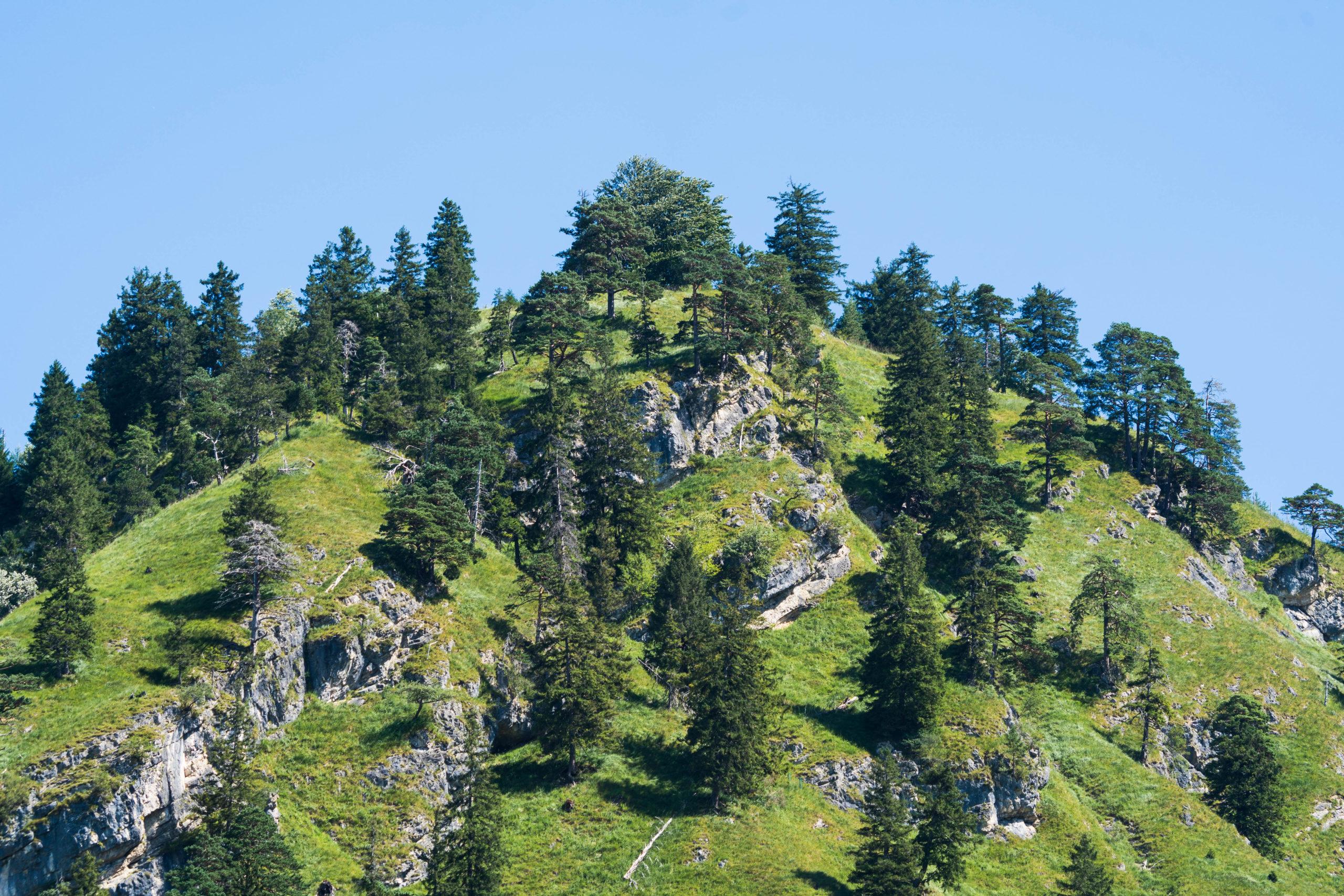 Allgäu, am Tegelberg