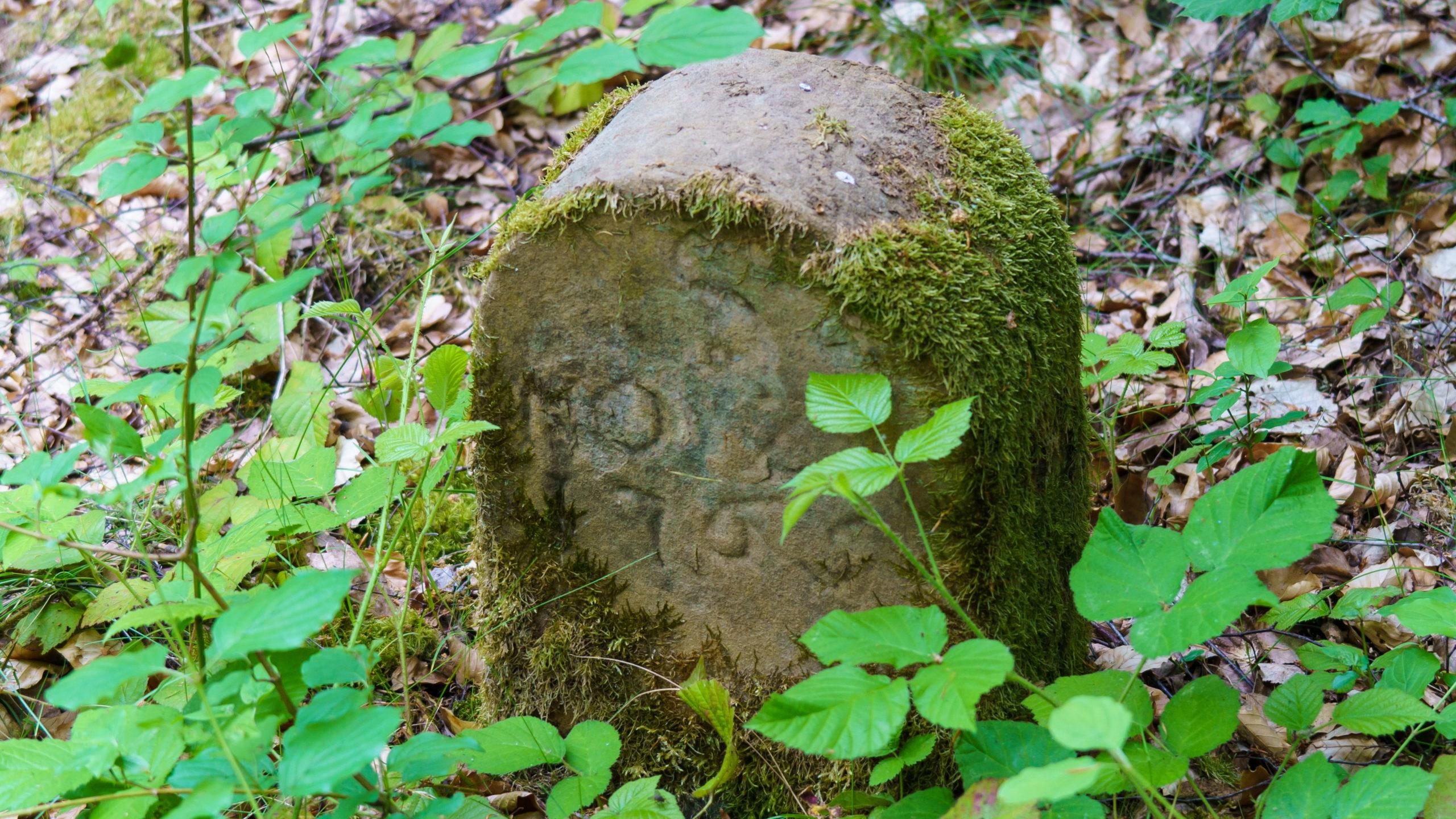 Grenzweg Gerstunger Forst, historischer Grenzstein Großherzogtum Sachsen-Weimar Jahr 1765