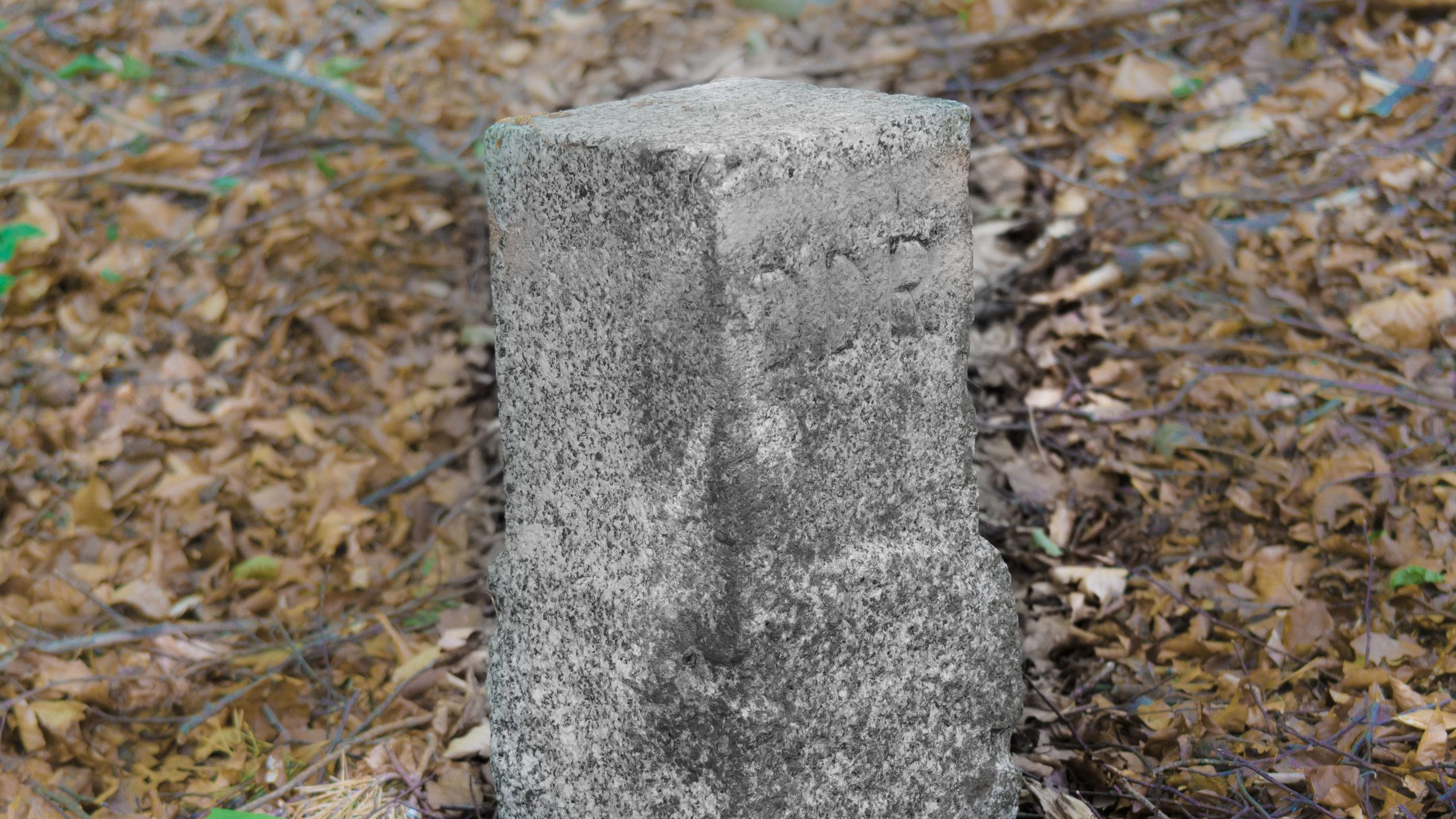 Grenzweg Gerstunger Forst, Grenzstein neuer Bauart (gesetzt zur Zeit der deutschen Teilung)