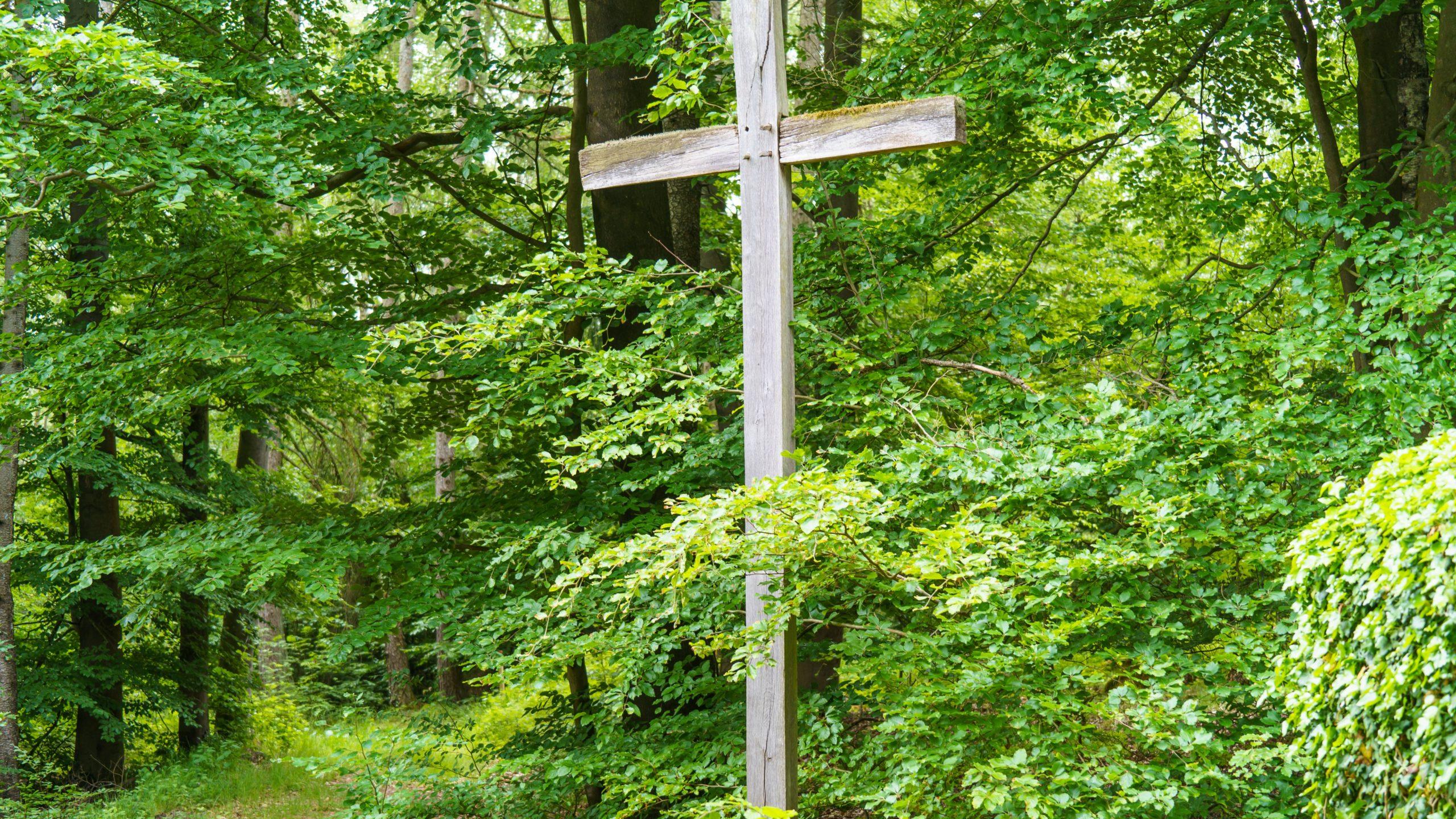 Grenzweg Gerstunger Forst, Erbbegräbnis-Stätte im Hessischen nahe Grenzweg