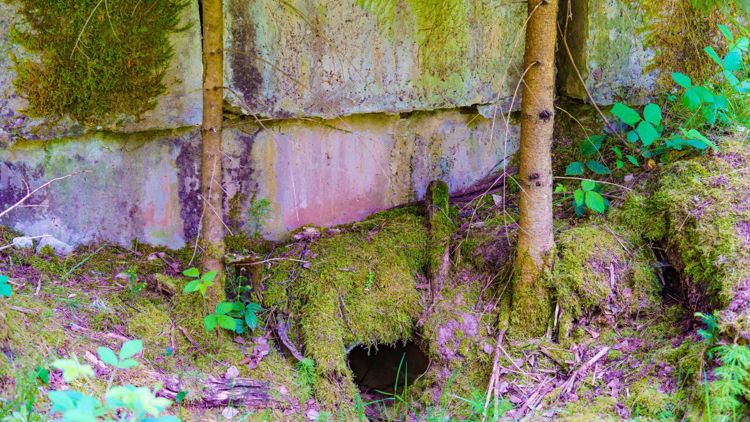 Grenzweg Gerstunger Forst, (geheimnisvolle) Rückstände technischer Maßnahmen im Blankenbacher Tal