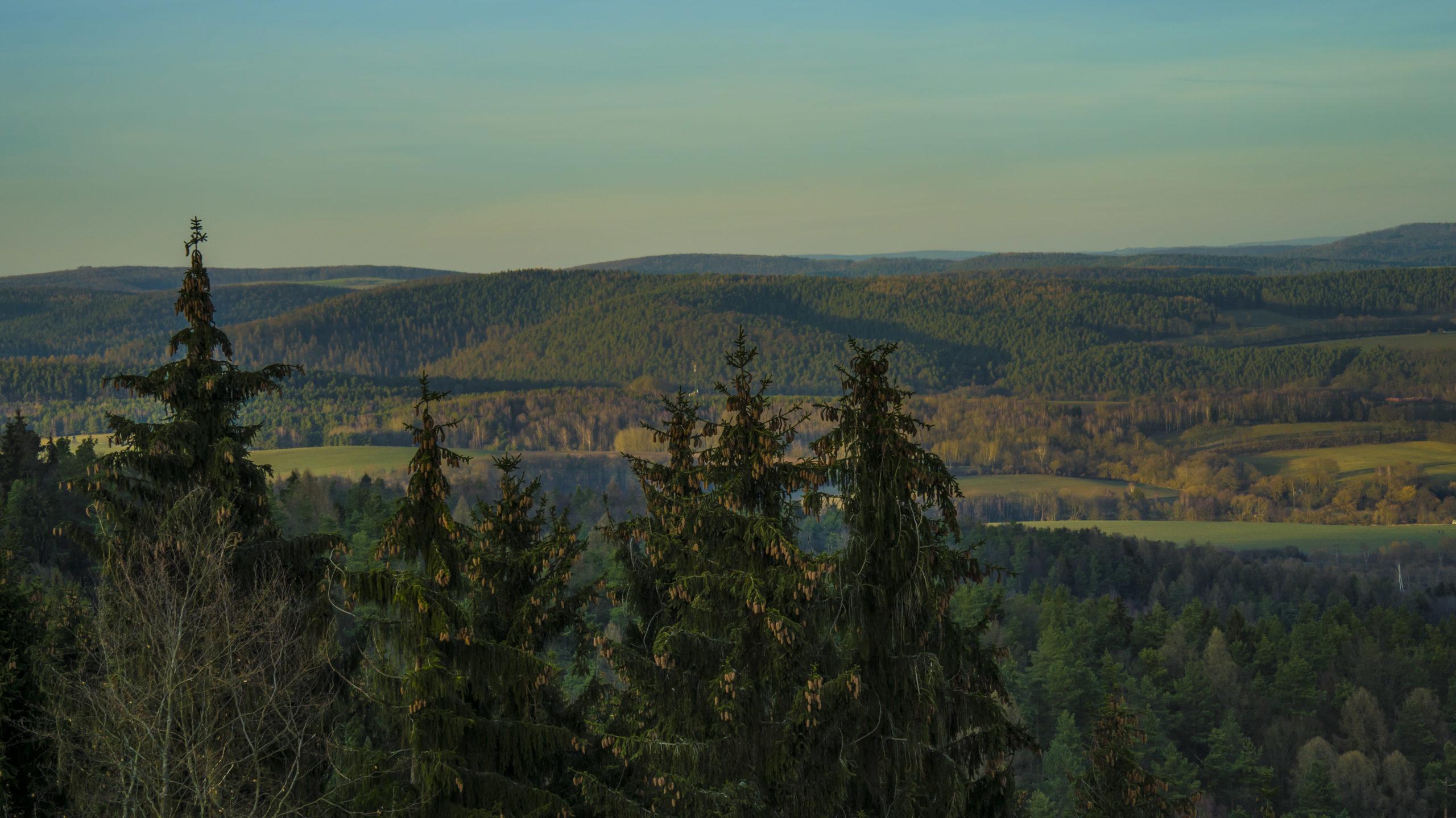 Blick von Bodesruh in Richtung Wildecker Forst und A4