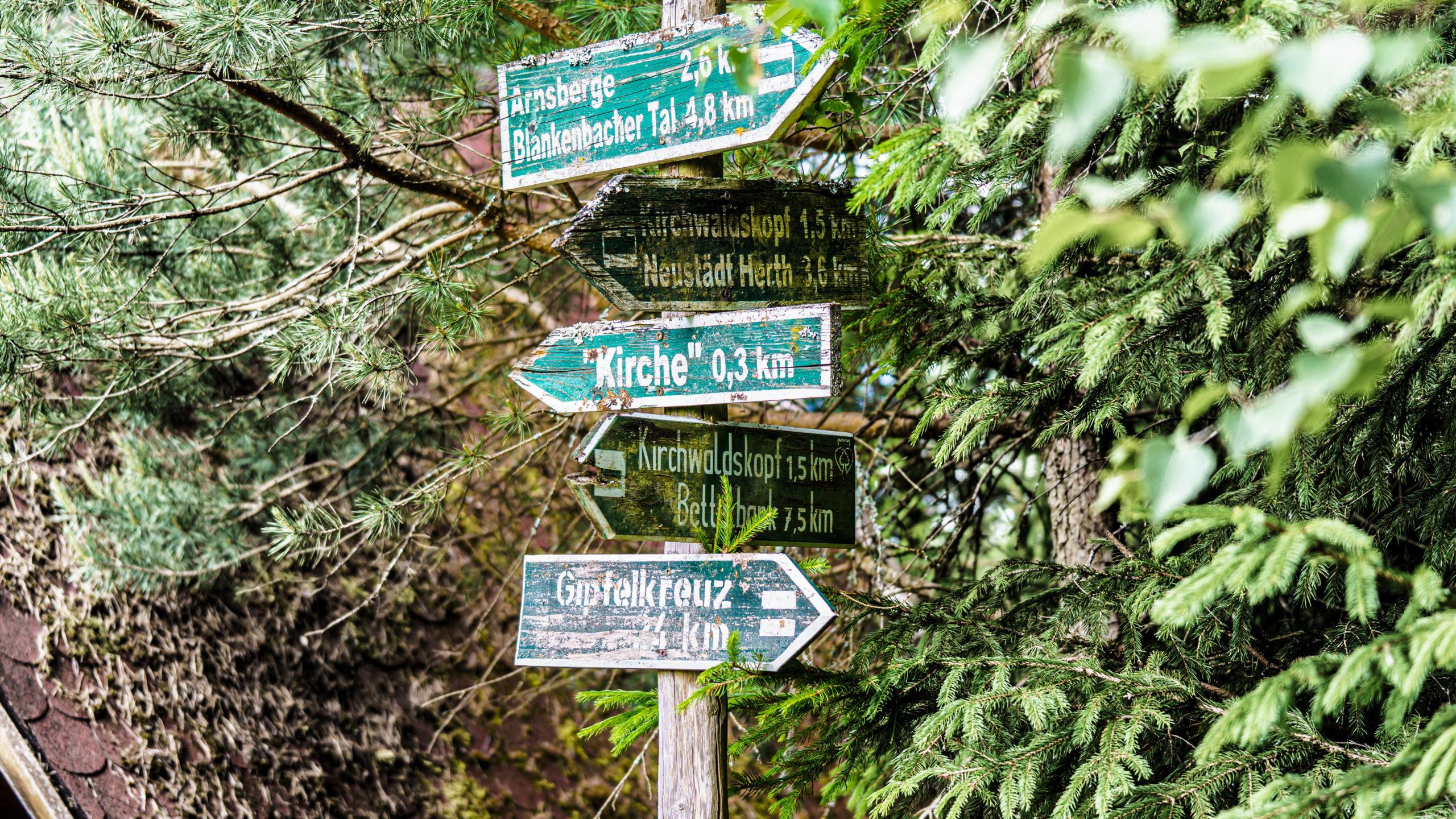 Grenzweg Gerstunger Forst, am Wartburgblick unweit der Kirche im Gerstunger Forst