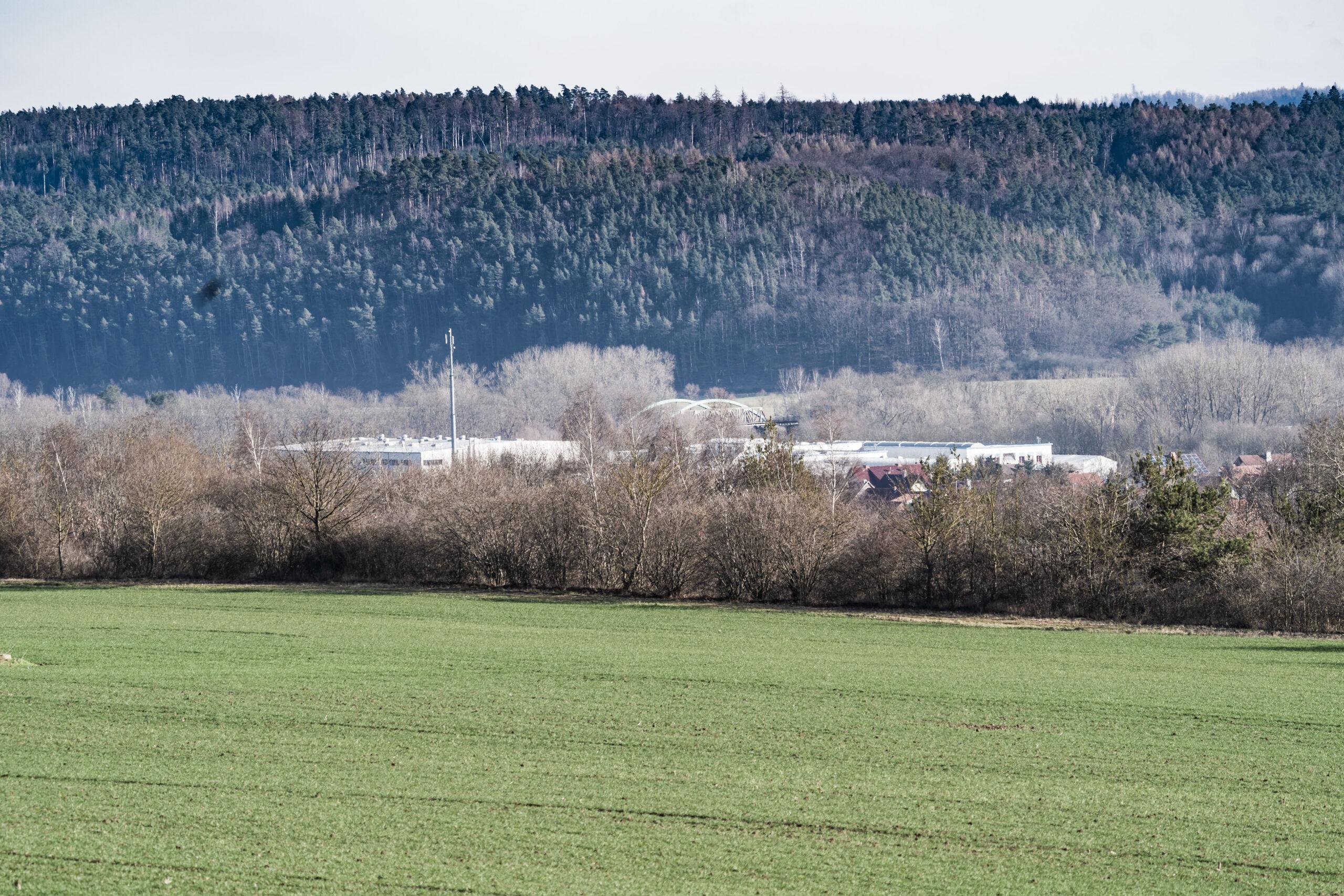 Gerstungen, Gerstunger Forst