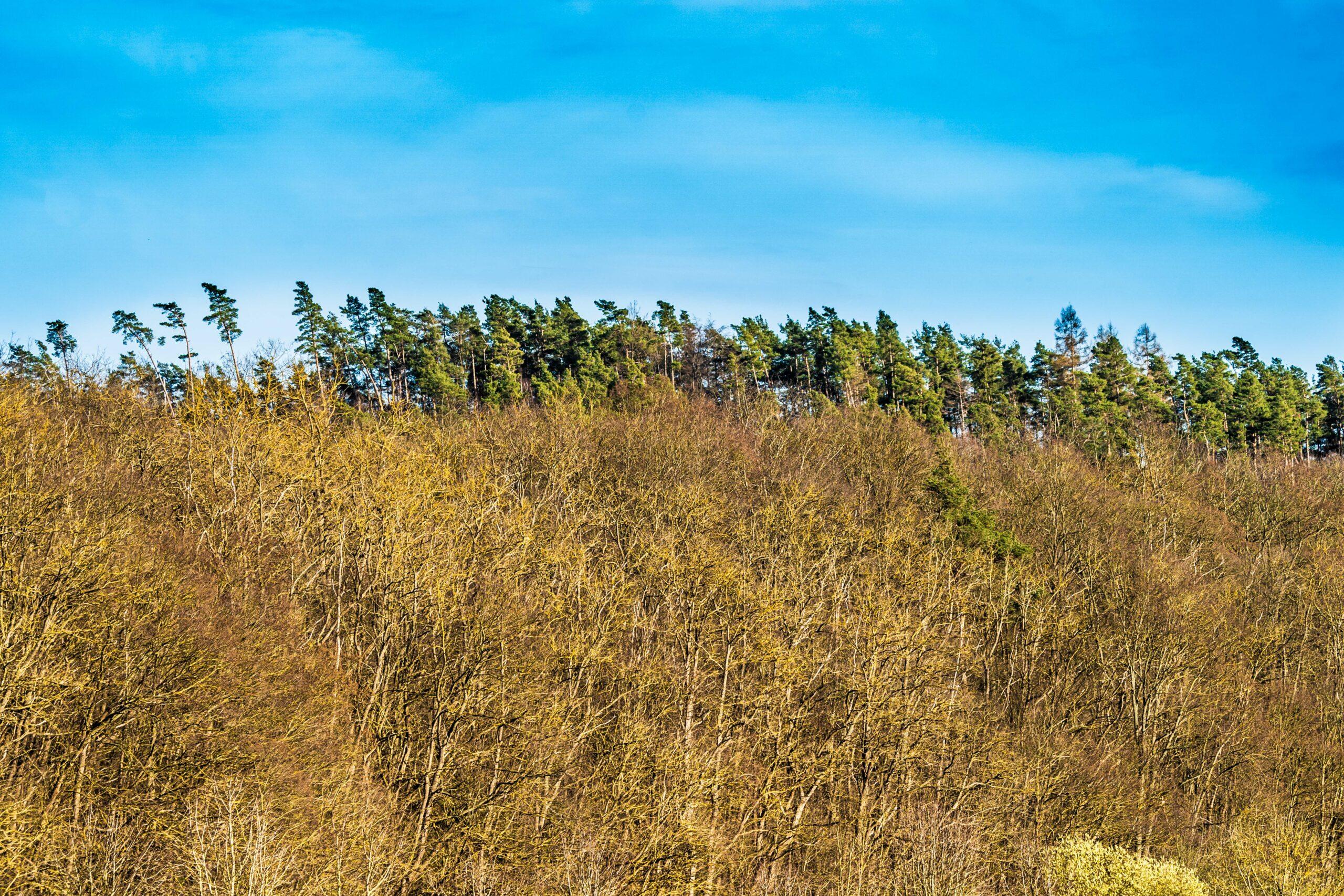 Thüringen, Gerstungen