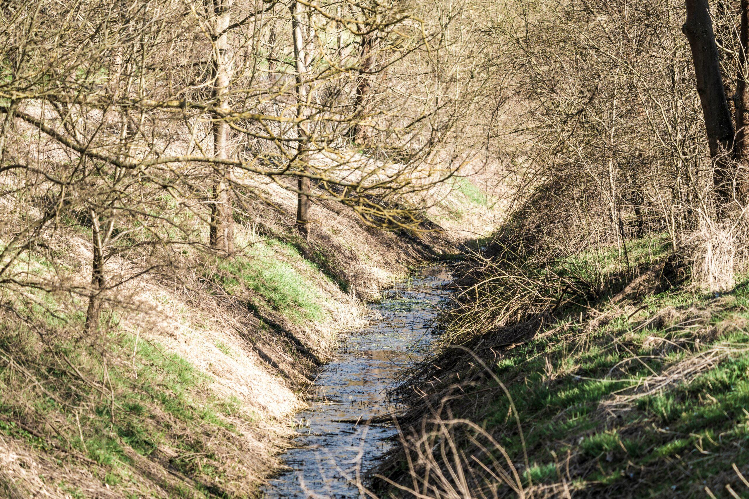 Thüringen, Gerstungen, Zufluss zur Werra