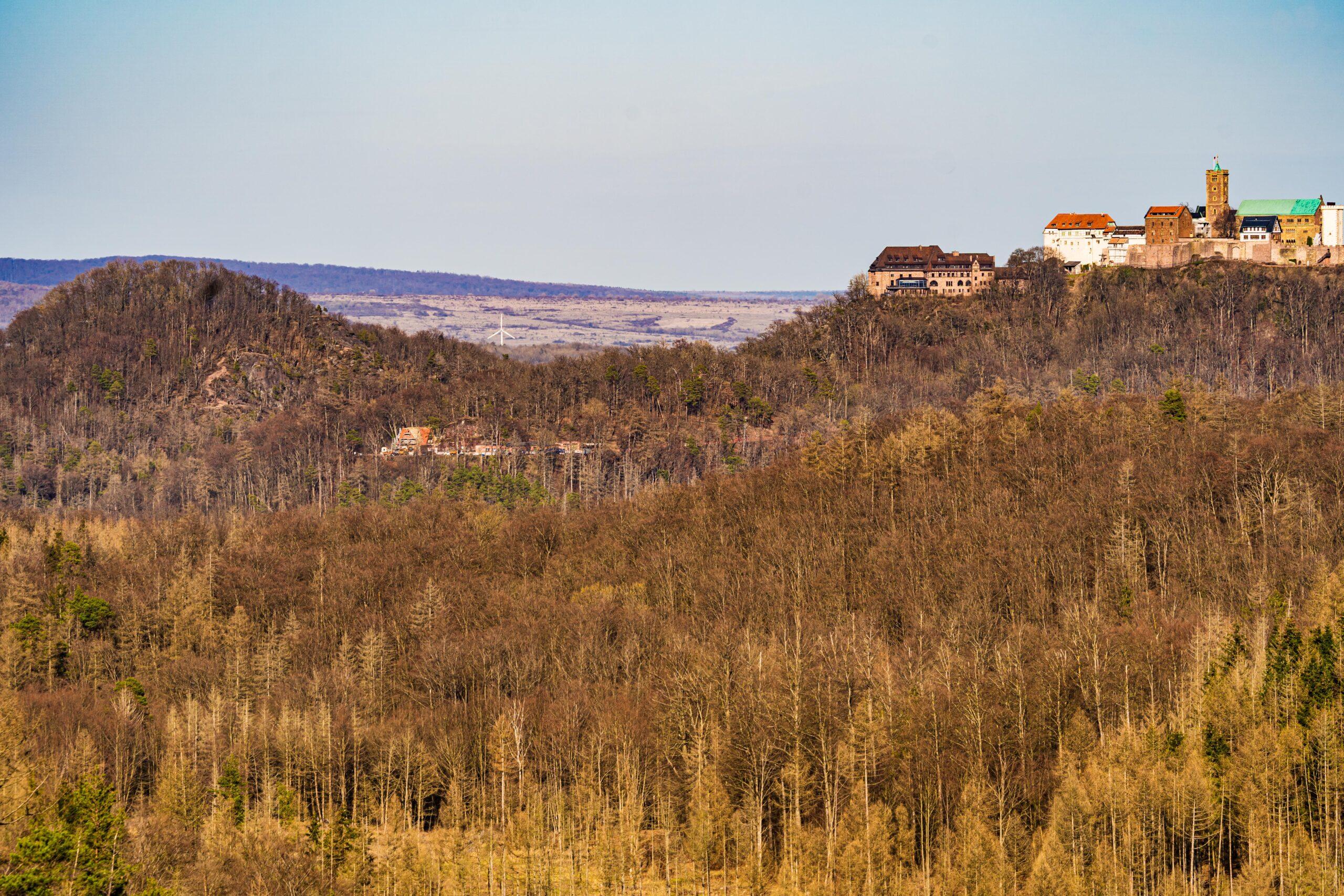 Thüringen, am Wartburgblick auf dem Rennsteig